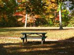 .fall in the park. by Foozma73