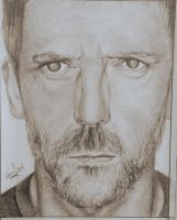 Everybody lies - House graphite by hamzfahmed