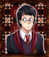 Harry Potter by AcidMohawk