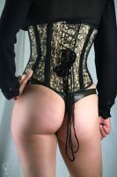 Truly Sin-Cyr Corsets 5 by ValCarpenter
