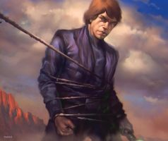 Luke Skywalker by DanarArt