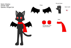 Shadow the cat ref by Kitsune257