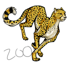 Cheetah by Brittlebear