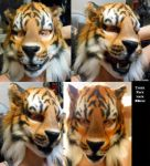 Tiger Mask Being Worn by Magpieb0nes