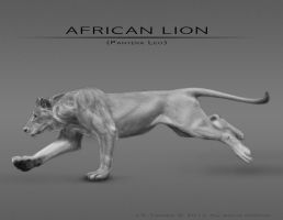 African Lion by EtherealProject