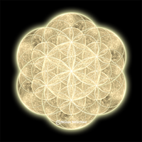Moon Flower of Life by narmansk8