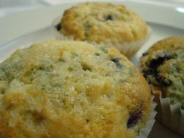 Blueberry Muffins by zamor438