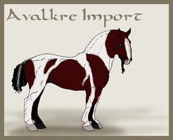 Avalkre Horse Import 7 by ReaWolf