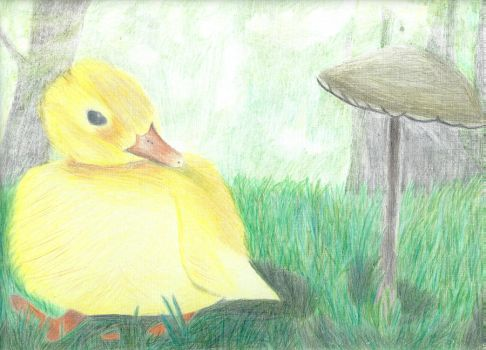 Ducky by Goldenfurproduction