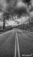 The Autumn Road BW by mjohanson