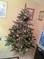 2014 Christmas Tree 7 by BigMac1212