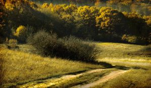Long and winding way home by Callu