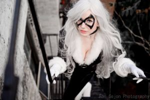Black Cat  - 03 by galaktikmermaid