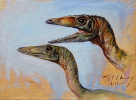 Study of JP2 Compsognathus Head by cheungchungtat