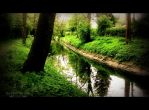 My River My Heart by MagicBlanche