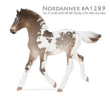 Foal #A1289 by NorthEast-Stables