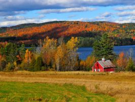 Vermont Fall Foliage by mand3rz