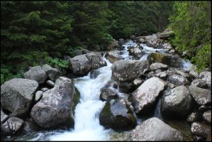 Pride of Slovakia #3 - Cold Creek, High Tatras by Wewericka