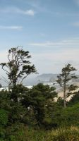 Above Cannon Beach by bethabus