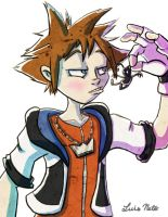Sora by Spidersaiyan