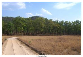 Bhandavgarh - Landscape by Knightmare-at-9