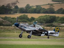 North American P-51D Mustang by amipal