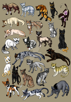 ThunderClan Characters (Warriors BAB fanfiction) by RiverPanther
