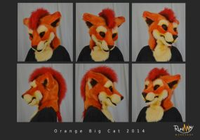 Orange big cat head by Adele-Waldrom