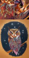 Owl Painting... by asyerart