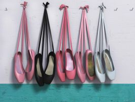 Pointe Shoes by frogdot