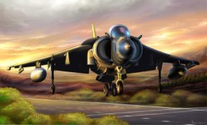 Harrier by OmegaLioness