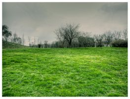 fresh grass by Iulian-dA-gallery