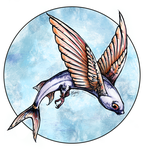 Flying Fish by ReneCampbellArt