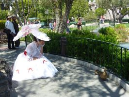 DISNEYLAND: Jolly holiday with Mary by Tehodda