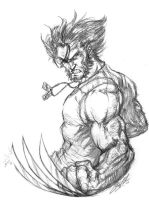 Wolverine sketch by CdubbArt