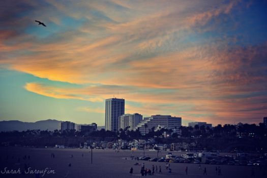 Californication by SarahSaroufim1