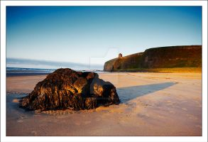 Mussenden Temple , NI by DL-Photography