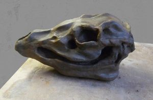 Sculpture - Skull Head by Tzenor