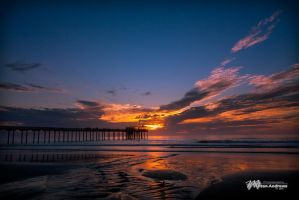 Scripps Pier II by Milton-Andrews