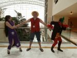 The battle over Luffy by dragon-warr1or