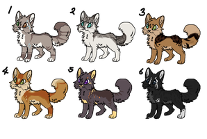 Catadopt18 by Eternal-adopts