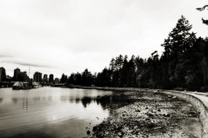 Old Vancouver by megapixelclub