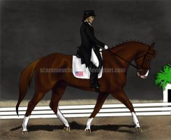 Seksnkandy GC Dressage by scaramouche2802
