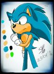 Sonic the hedgehog by Sonaku