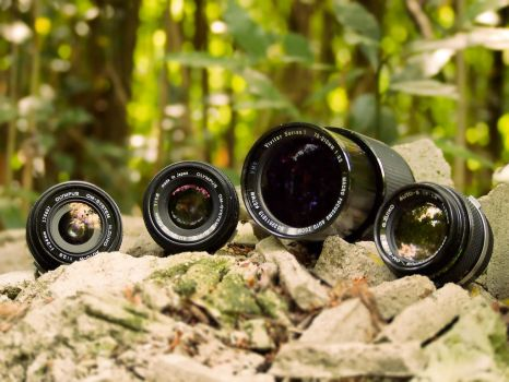My vintage lens collection by ilNeofita