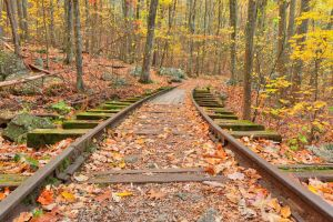 Autumn Logging Railroad by somadjinn