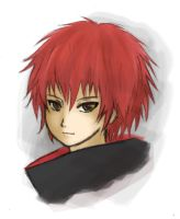 Sasori no Danna by FeatherHarp