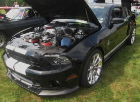 (2013) Shelby Mustang GT500 by auroraTerra