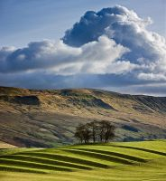 Whinney Hill by Waylandscape