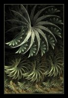 Fernery by Mignon